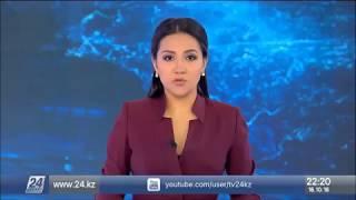 Трамп запросил у Турции материалы по делу Хашогги