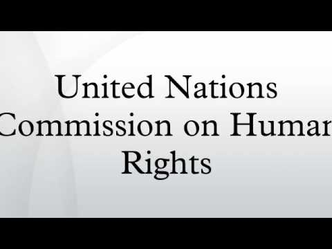 United Nations Commission on Human Rights