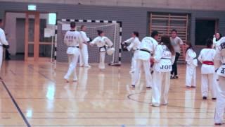 Entrainement de Taekwondo avec Le Grand Maître Kim Seung Yong