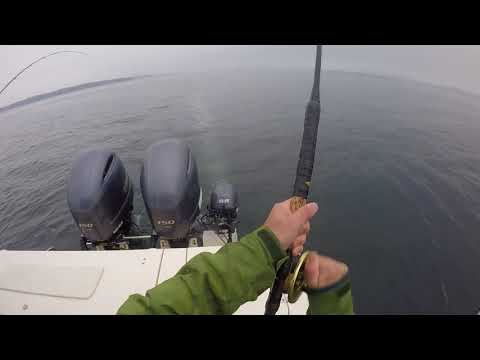 Campbell River Fishing Trip