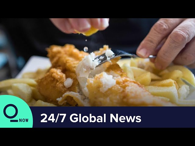 LIVE: Brexit Deal May Mean Less British Cod for Fish & Chips