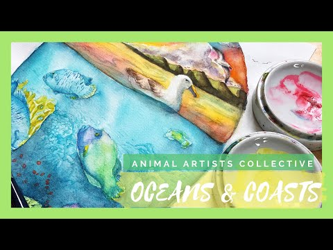 Oceans and Coasts 🐠 | Animal Artists Collective