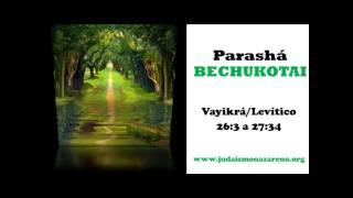 Parashat Bechukotai - Judaísmo Nazareno