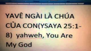 YAVÊ NGÀI LÀ CHÚA CỦA CON(ySAYA 25:1-8)