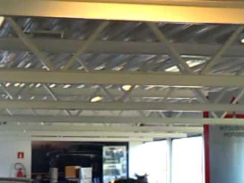 Moose loose inside Mitsubishi/Opel car dealership.