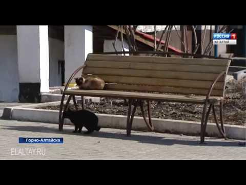 Прокуратура города проверила начисление оплаты за ЖКХ