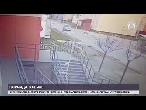 Житель Сеяхи, сбивший шесть человек, предстанет перед судом