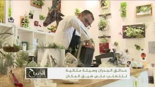 هذا الصباح-مالك بن سعيد.. فن إعداد الحدائق المعلقة