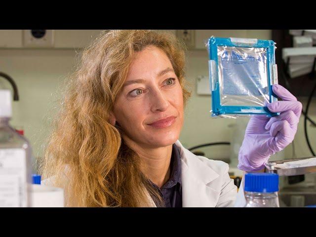 Jennifer Maynard: 2015 UT Austin Emerging Inventor of the Year