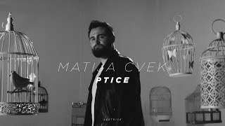 MATIJA CVEK - Ptice (Official Video)