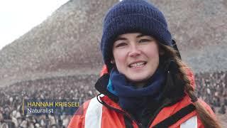 National Geographic Antarctica Movie 2019