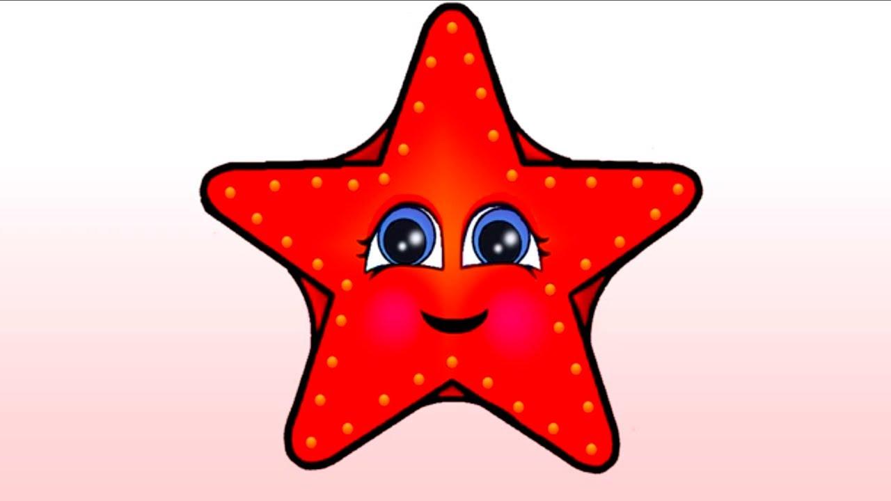 çizgi Film Pepe Pepe Ve Kırmızı Deniz Yıldızı Deniz Canlıları