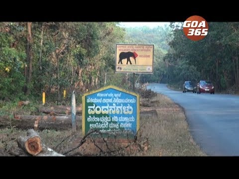 Anmod Ghat closed from Wed, traffic diverted via Amboli & Chorla