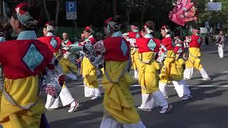 """高知県高知市で毎年8月9日から12日の4日間開催される""""よさこい祭り""""で撮..."""