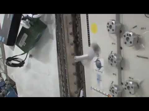 Dzhanibekov effect demonstration in microgravity, NASA.(Tennis racket theorem)