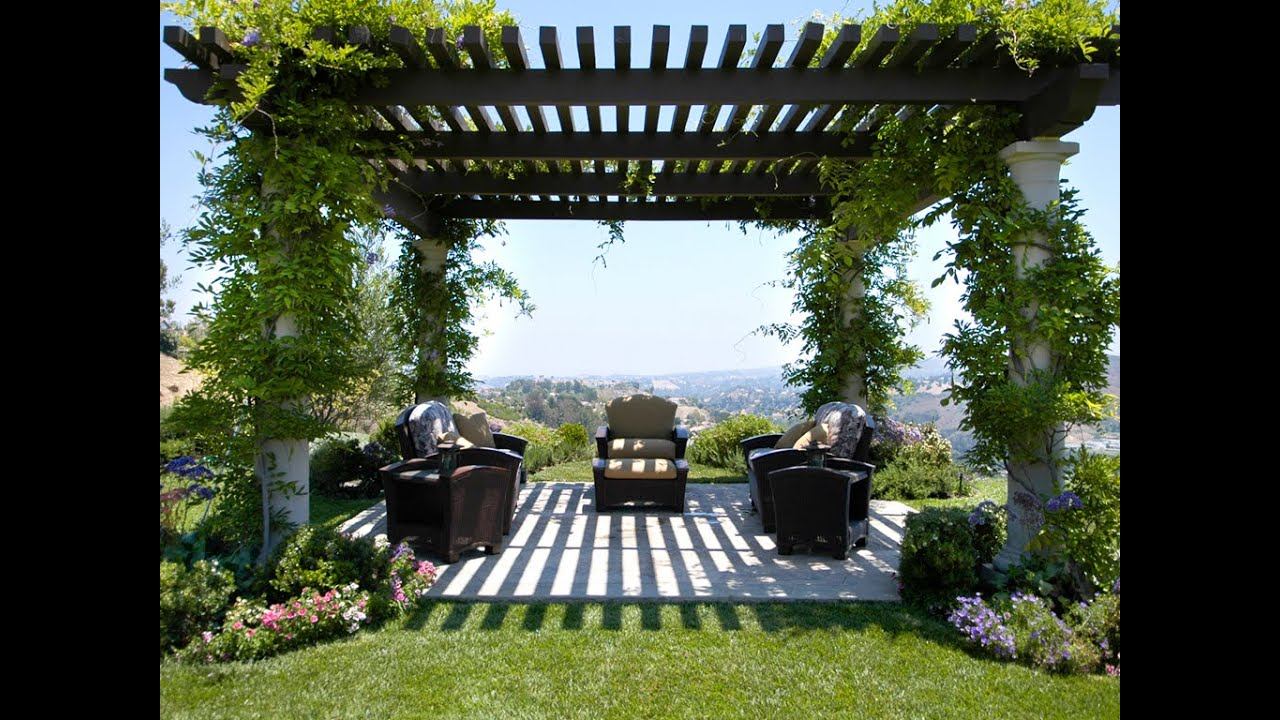 Captivating Garden Pergola
