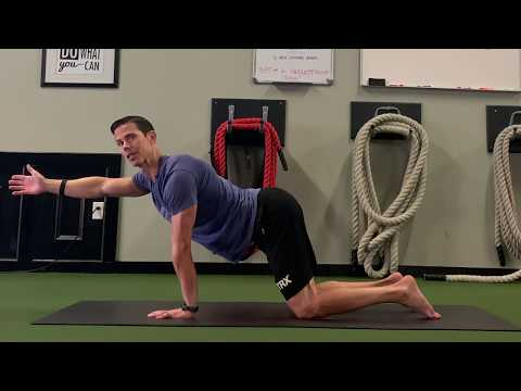 HOW TO BUILD STRONG ABS AND SHOULDERS