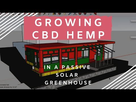 Growing CBD Hemp In a Passive Solar Greenhouse using  Permaculture