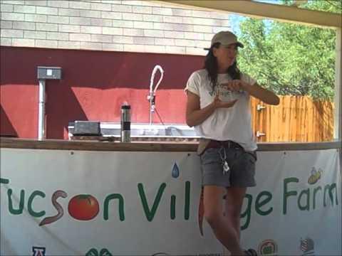Border Food Summit 2012 - Tucson Village Farm
