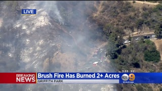 WATCH LIVE: Griffith Park Fire