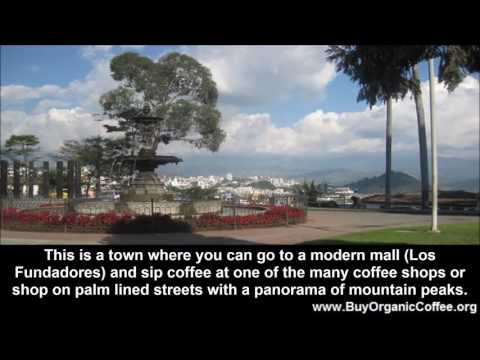 Want to Retire in Coffee Country?