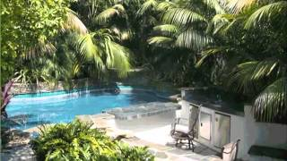Kentia Palm Outdoors | House - Home Of Indoor & Office Plants Picture Collection