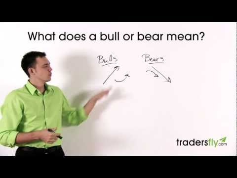 What Does a Bull and Bear Mean in the Stock Market