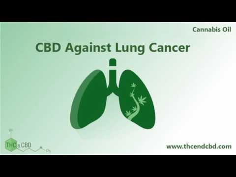 Cannabidiol Against Lung Cancer Cells