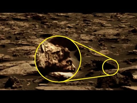 5 Mysterious Creatures NASA Caught On Camera!