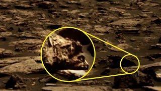 5 Mysterious Creatures NASA Caught On Camera!