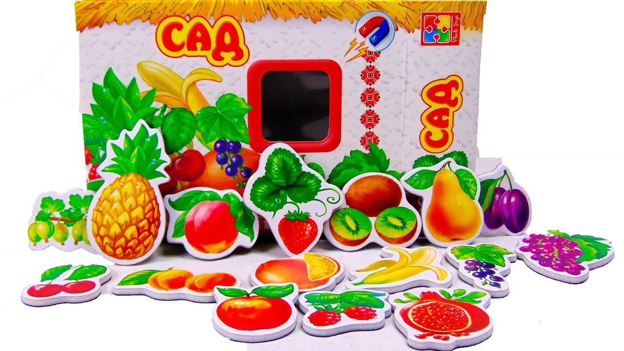 фрукты овощи картинки фото