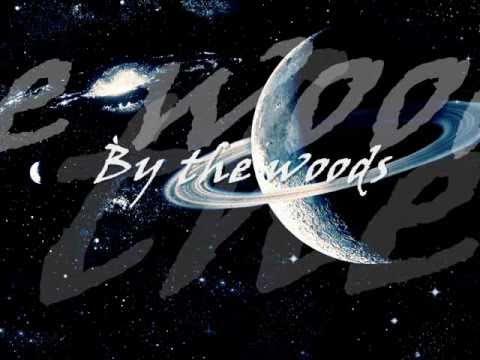 Tori Amos - Black dove lyrics