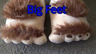 Big Feet #1399