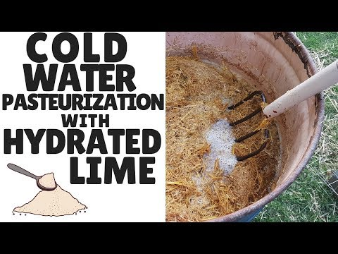 Cold Water Lime Pasteurization For Growing Mushrooms