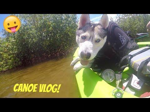 Husky Canoeing Adventure Vlog!