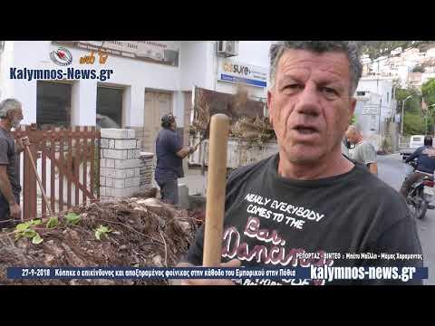 27-9-2018 Κόπηκε ο επικίνδυνος και αποξηραμένος φοίνικας στην κάθοδο του Εμπορικού στην Πόθια
