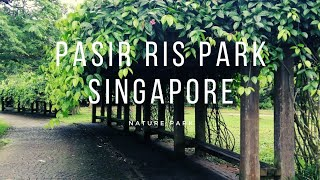 Singapore Pasir Ris Beach   Pasir Ris Park   Fishing   Camping Point   Simply Cooking With Zabeen