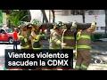 Vientos violentos sacuden la CDMX - Fenómenos Naturales - Denise Maerker 10 en punto