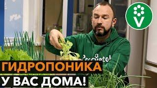 Свежая зелень БЕЗ НИТРАТОВ круглый год! ПРОЩЕ НЕ БЫВАЕТ!