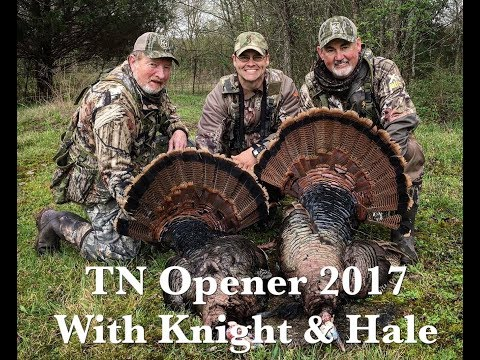 TN Opener With Knight & Hale 2017