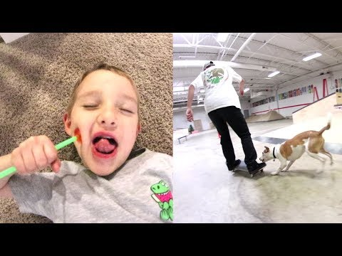 Download Youtube: FATHER SON PLAY TIME! / Dog At The Skatepark!