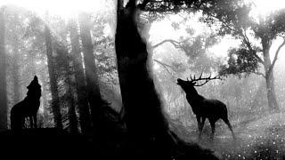 Deep Melodic Techno mix 2020 - Black Deer - Miss Monique, Paul Angelo & Don Argento,…