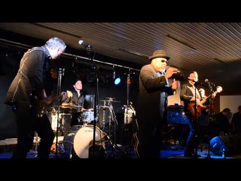 2014-03-08 - BIG DADDY WILSON ELECTRIC PROJECT - Texas Boogie @ MEENSEL BLUES