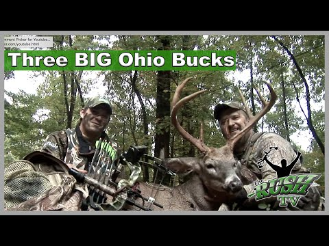 Episode 3 Bowhunting Big Ohio Whitetails The RUSH TV 2012 MPEG4 .mp4