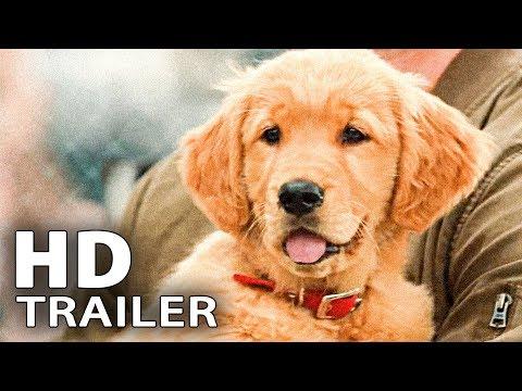 ENZO UND DIE WUNDERSAME WELT DER MENSCHEN Trailer Deutsch German (2019)