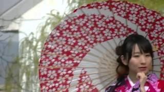 京都の祇園で行われた、撮影会の動画です。