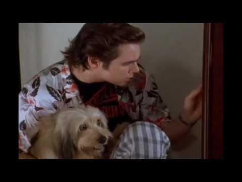 Ace Ventura Pet Detective Dog Scene