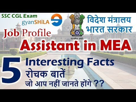 Assistant In MEA   Interesting Facts You MUST KNOW