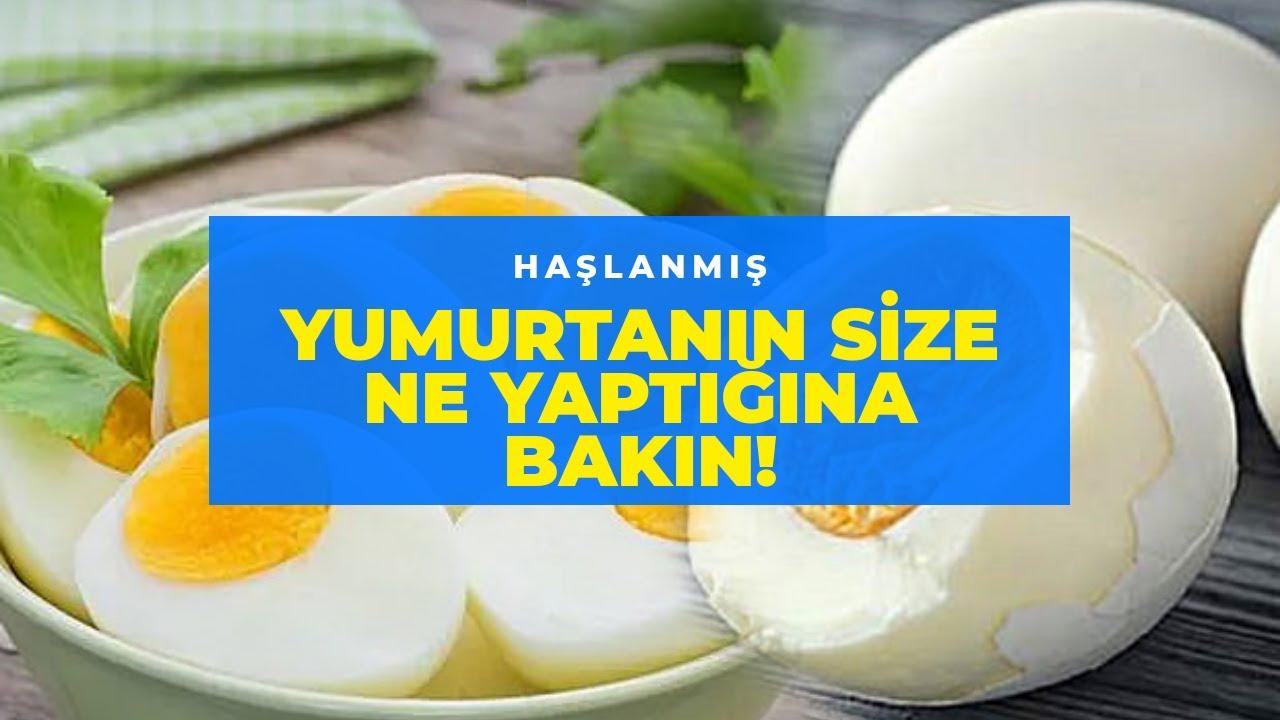 Günde 2 Yumurta'nın vücuda Sağladığı İnanılmaz 9 faydası!