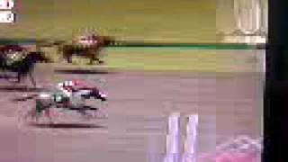 gallop racer 2001 race